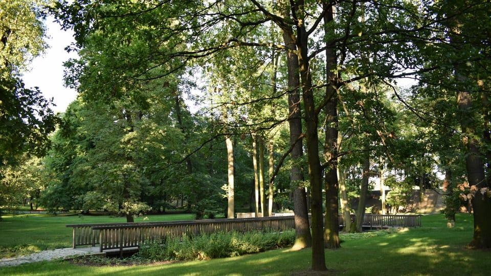 Почерницкий парк,  Фото: Екатерина Сташевская,  Чешское радио - Радио Прага